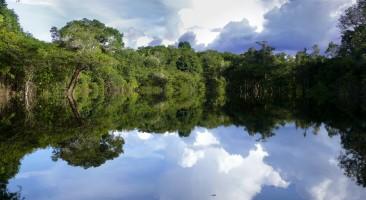 Incentivos para la protección hidrológica